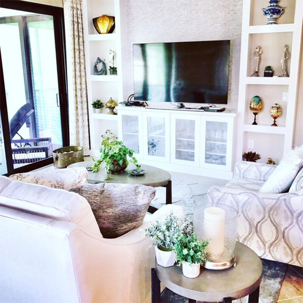 Living Room   We Organize Florida - Professional Home, Office, and Retail Organizers in Southwest Florida